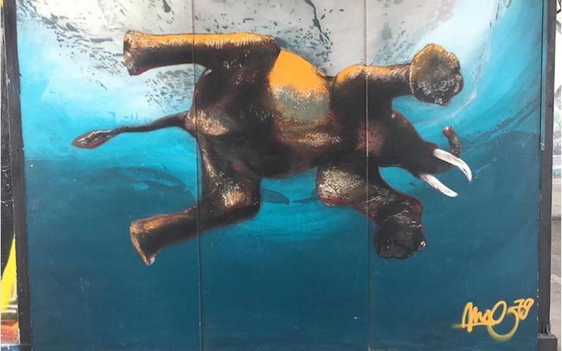 Graffiti aus dem Teufelsberg zeigt schwimmenden Elefanten
