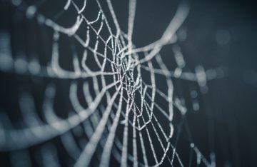 Dunkel Spinnennetz zum Artikelthema Halloween-Make-up-Ideen